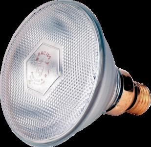 Lamp 100 W wit Philips spaar